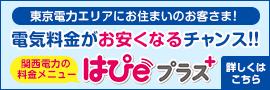 東京電力エリアにお住まいのお客さま!電気料金がお安くなるチャンス!!関西電力の料金メニューはぴeプラス